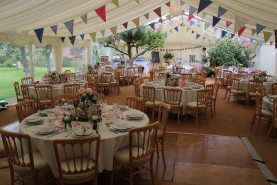 Apple orchard bunting